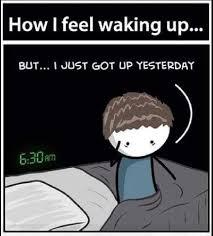 Funny Morning Memes - funny good morning meme images gif good morning images
