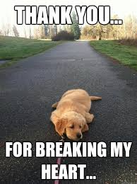 Heart Break Memes - thank you for breaking my heart sad dog quickmeme