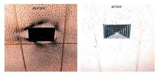 clean wall krystal kleen inc