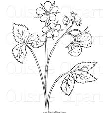 royalty free coloring sheet stock cuisine designs