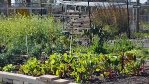 Growing Zone Map Urban Farming U2013 22nd Annual Tulane Environmental Law U0026 Policy Summit
