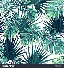 tropical rainforest native plants tropical background jungle plants seamless vector stock vector