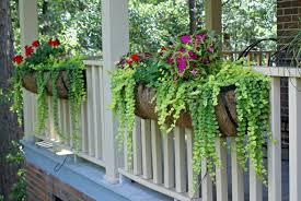 Patio Potato Planters The Best Plants For Hanging Baskets On Front Porches Planters