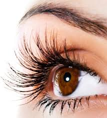 professional eyelash extension eyelash extensions laguna niguel latisse orange county laguna
