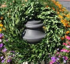preserved boxwood wreath preserved boxwood wreath 16 flora decor
