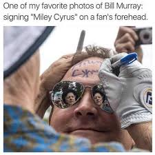 Murray Meme - bill murray meme by calico91301 memedroid