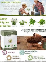 amazon com grow 4 herbal tea plants from seed indoor herb