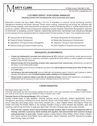 Resume Summary Examples Sales Example Resume Summary Resume Badak