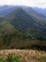 Mount Lindesay Highway Wikipedia Allyn Range Wikipedia