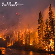 Wildfire Song About by 8tracks Radio Wildfire 45 Songs Free And Music Playlist