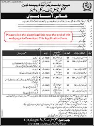 national council of social welfare islamabad jobs 2015 february