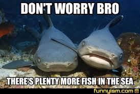 Fish In The Sea Meme - don t worry bro there s plenty more fish in the sea meme factory