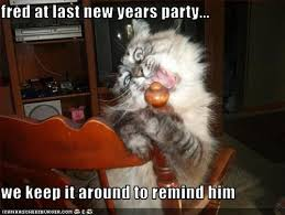 Happy New Year Cat Meme - memes happy new year 2018 funny cat memes free download
