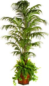 Tree For Home Decoration Beautiful Artificial Trees For Home Decor Home Decor Galleries