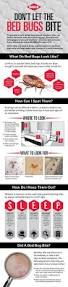 Bed Bugs How Do You Get Them 73 Best Bed Bugs Images On Pinterest Bed Bug Remedies Natural