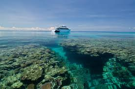 cairns car guide pro dive cairns attraction tour cairns queensland