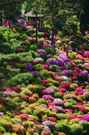 flowers gardens and landscapes japanese flower garden and their colorful landscape
