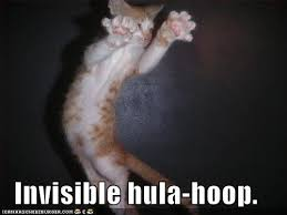 Invisible Cat Meme - album funny pictures invisible hula hoop cat