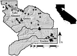 Wild Fire Quincy Ca by Forests Free Full Text Development Of Vegetation And Surface
