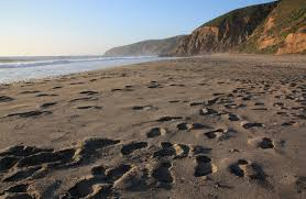 Discover The North Coast Visit California Top 10 Best Beaches In California