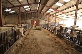 chambre agriculture saone et loire chambre d agriculture saone et loire 6 identification des