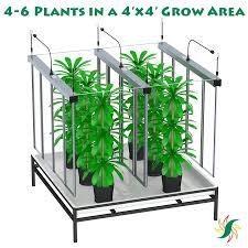Led Grow Lights Cannabis California 4x4 Led Cannabis Grow Light