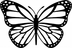 cartoon drawing butterfly news butterfly butterfly cartoon black