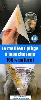 comment faire partir des moucherons dans une cuisine de moucherons dans la cuisine le piège magique pour vous