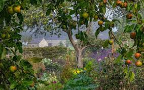 breathtaking images capture nature u0027s gardens mnn mother nature