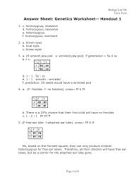 genetics basics worksheet 2000 answers 100 images dna basics