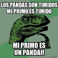 Memes De Pandas - meme filosoraptor los pandas son timidos mi primo es timido mi