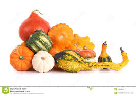 pumpkin no background colorful gourd family royalty free stock images image 34575339