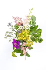 How To Draw A Vase Of Flowers How To Make A Flower Arrangement With Sliced Limes Ehow