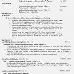 Profile On Resume Sample by Nice Professional Profile Resume Examples U2013 Resume Template For Free