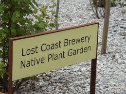 native plants california humbot lost coast brewery native plant garden