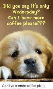 Wednesday Meme - did you say it s only wednesday can i have more coffee please