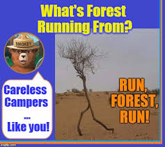 Only You Can Prevent Forest Fires Meme - only you can prevent forest fires imgflip