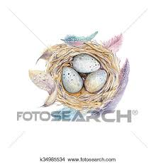 drawings of hand drawn watercolor art bird nest with eggs easter