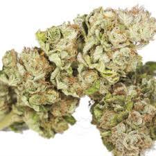 buy edible cannabis online buy marijuana online buy online buy cannabis online