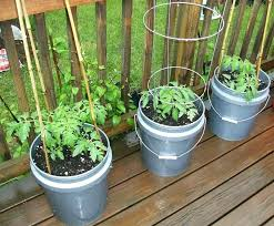 Patio Container Garden Ideas Vegetable Garden Planters Ideas Garden Patio Container Vegetable