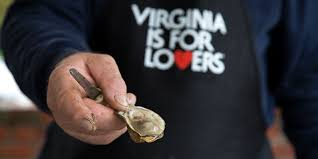 18 virginia restaurants that serve up the freshest seafood u0026 oysters