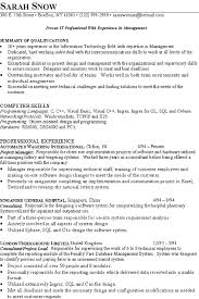 Director Of It Resume Enchanting Resume Examples 2016 Information Technology It Resume