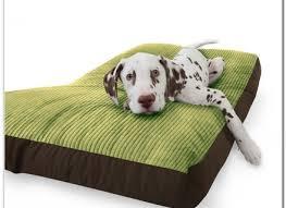 indestructible dog bed korrectkritterscom
