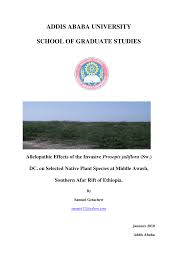 native plant species allelopathic effects of the invasive prosopis juliflora sw dc