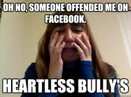 Crying Girl Meme - oh no someone offended me on facebook heartless bully s crying