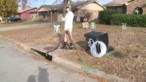 vacation lawn decorations stolen after going viral