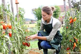 10 Vegetables U0026 Herbs You by Make Your Garden Grow Ten Healthy Veggies And Herbs You Can Plant
