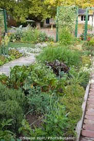 65 best edible gardens images on edible garden edible