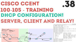 cisco ccent ccna r u0026s 100 105 dhcp configuration server
