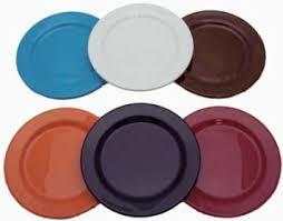 extremeware plastic dinner plates set 4 bentley drinkware